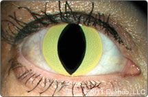 Special Effects Contact Lenses